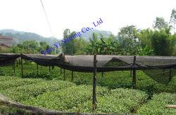 紫外線保護陰のネット(AN090S-AN250S)