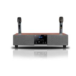 Home Theater de micrófono inalámbrico portátil multimedia del sistema de altavoces Bluetooth Karaoke