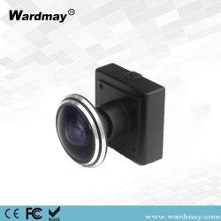 360 Degré Fish-Eye 700TVL Caméra CCTV CCD utiliser pour la plus grande banque de l'environnement Secret telles ATM