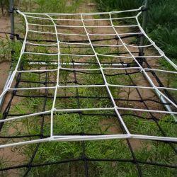 120*60 رباط مرن أبيض مصنع النتيبة دعم النباتات شبكة Scrog لخيمة متنامية