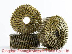 Les vis/ Ring/bobine lisse des clous pour les palettes en bois, bois, meubles, maison en bois