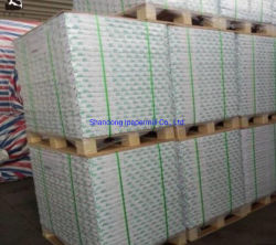 document 100g/110g/120g Woodfree en het Document van de Compensatie in Massa of Broodje