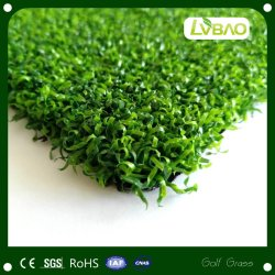 يضع اللون الأخضر لعبة غولف [بدل] كرة مضرب لعبة هوكي [روغبي] [غتبلّ] عشب
