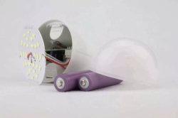 Échantillon gratuit High Bright E27 18W rechargeable Lampe LED d'urgence avec deux piles