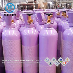 직업적인 제조 압축 기체 실린더 안전
