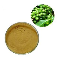 損失の重量の緑のコーヒー豆のエキスの粉