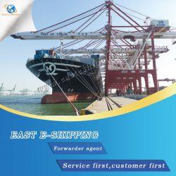エリザベスのロジスティクスの海の貨物運送業者を移植するために出荷する海洋FCL