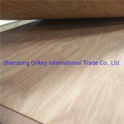 Envie de contreplaqué de bois de placage naturel face MDF vendre directement en usine