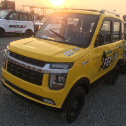 China-Qualität Soem-populäres 4 Rad-elektrisches Fahrzeug/Auto für Mini