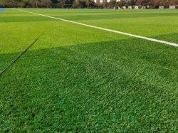 50mm Soccer Football Baseball Bicolor Aire de jeux de l'herbe Plante artificielle de champ