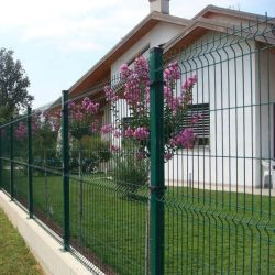 3D Curve Welded PVC Powder Coated Iron Wire Mesh Protecting Recinzione