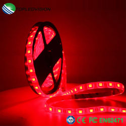 Luz decorativa Multi-Color RGB SMD Fita5050 Tiras de leds flexíveis 14,4W/M