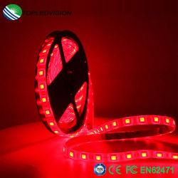 Il nastro multicolore SMD5050 LED flessibile di RGB dell'indicatore luminoso decorativo mette a nudo 14.4W/M