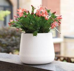 Vaso di plastica del POT-Fiore del rattan (KD2211-KD2214)