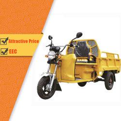 Ce/EEC/Certified de Elektrische Elektrische Driewieler van de Lading Trike