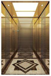 Vvvfの乗客のホームパノラマ式の貨物観察の住宅のエレベーター(16K003)
