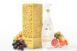 De Drank van het Gistmiddel van het Uittreksel van het fruit en van de Installatie