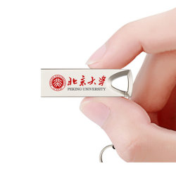 Mini USB à mémoire Flash de clé USB en métal Flashdriver