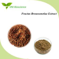 Het ISO Verklaarde Uittreksel van het Fruit van de Moerbeiboom van /Paper van Saponienen/het Uittreksel van Fructus Broussonetiae