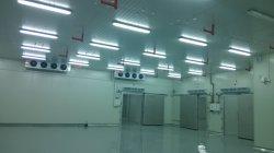 Nettoyer la chambre froide / salle de TP / Salle de stockage Pharmarcy