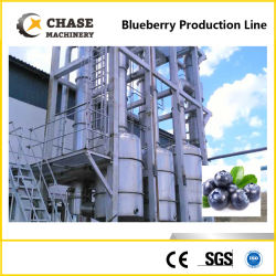 El puré de pulpa de jugo de arándano de procesamiento de producción de pasta de la planta haciendo