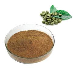 Polvere solubile in acqua di 10:1 di caffè dell'estratto verde del chicco