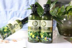 Nieuwe Vegan Cruelty Free Olive Oil Private Label Herbal Shampoo Haaruitval Shampoo haargroei Shampoo