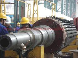 Elektrische centrale van de Turbogenerator 1MW-60MW van de Turbogenerator van de stoom de Vastgestelde