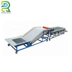 Vaglio del peso dinamico automatico dell'acciaio inossidabile per frutta e la verdura