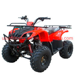 2021 새로운 오리지널 ATV 클래식 블랙 컬러 오프로드 ATV 공장 가격
