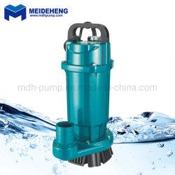 """Enige Fase 220V AC 2 """" 750W Pomp Met duikvermogen van het Water van Qdx de Schone"""