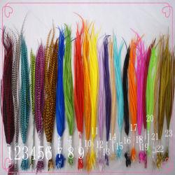 2013 верхней части Sal реального пуховые волосы продление / волос перья / перья в волосы