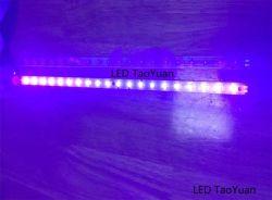 Licht van de LEIDENE 395400nm 50W het UV LEIDENE Strook