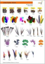 Raw Matériel de plumes