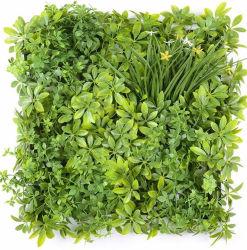 التصميم الداخلي المضاد للأشعة فوق البنفسجية يزرع مصنع صناعي أوراق النباتات الزينة حديقة رأسية لزينة الحدائق