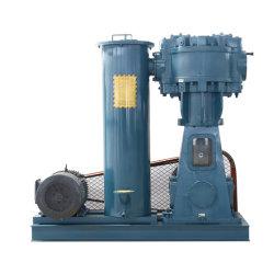 Wlw Alternativo vertical do sistema de bomba de vácuo Wlw WL-600