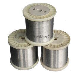 A utilização de processamento de alimentos da tecelagem de fio de aço inoxidável