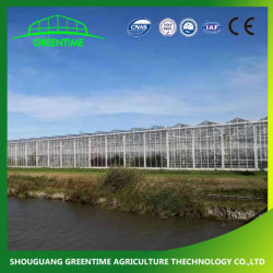 Barata y Agricultura/Granja/policarbonato/cristal/Multi-Span Gases de Efecto con el riego sistema hidropónico de fresa y hortalizas y flores y el tomate y pimiento
