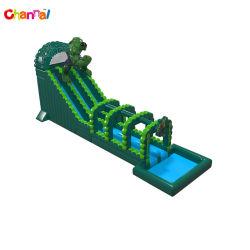 巨大な膨張可能なスライド緑の膨張可能な水のスライド