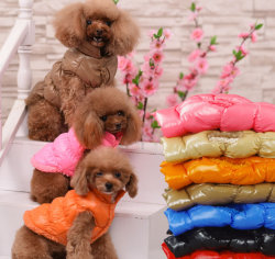 Na qualidade Jacket Roupas Pet Cachorro Quente Clothings têm