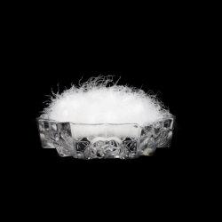 慰める人の添加物の85%洗浄された白いガチョウの卸売