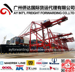 Internationale Seefracht von China nach Sri Lanka