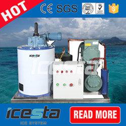 Icesta 3 5 8 10 toneladas de sal del agua de mar Copo de refrigeración de agua Máquina de hielo para la pesca Ocean-Going