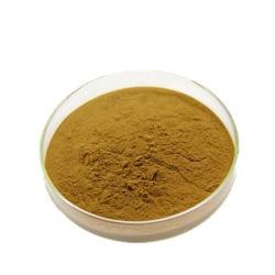Extracto de Hierbas en Polvo de Okra desecado natural