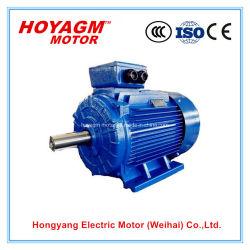 IECのセリウムの企業のための公認0.75-375kw低電圧のユニバーサルIe2効率の三相誘導AC電動機