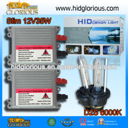 D2s 12V35W 6000kの球根、StandardHIDのキセノンのバラストキット