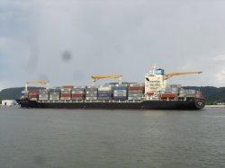 Versenden/Ocean Freight/Logistics From All Ports von China nach Rotterdam/die Niederlande