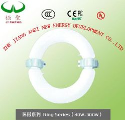 Jisheng Ring-Induktions-Lampen-Schlauch für helle Befestigung