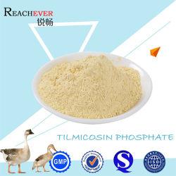 La alta calidad 137330-13-3 fosfato Tilmicosin