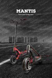 Commerce de gros 6.5inch puissant de la mobilité à deux roues scooter électrique zéro Kick pied
